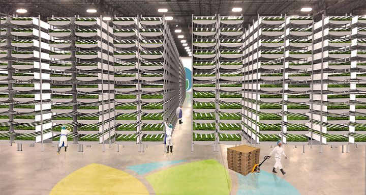A rendering of Aerofarms' new headquarters in Newark, New Jersey, which it says will be the largest indoor vertical farm
