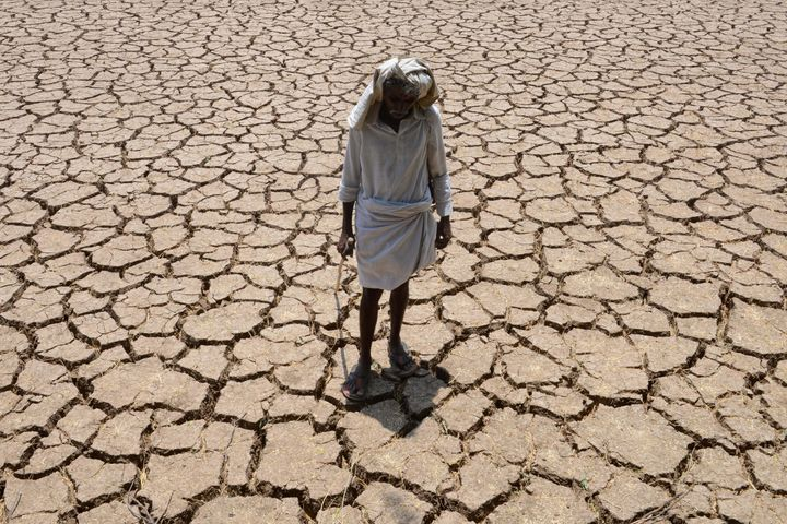 Many regions in India are suffering from severe water shortages and unusually high temperatures for April. A farmer's cotton