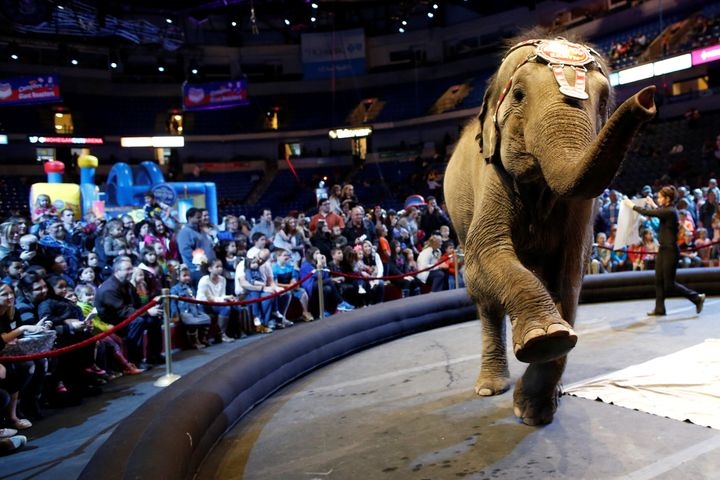 """An elephant performs in the pre-show entertainment at Ringling Bros and Barnum & Bailey Circus' """"Circus Extreme"""" show at"""