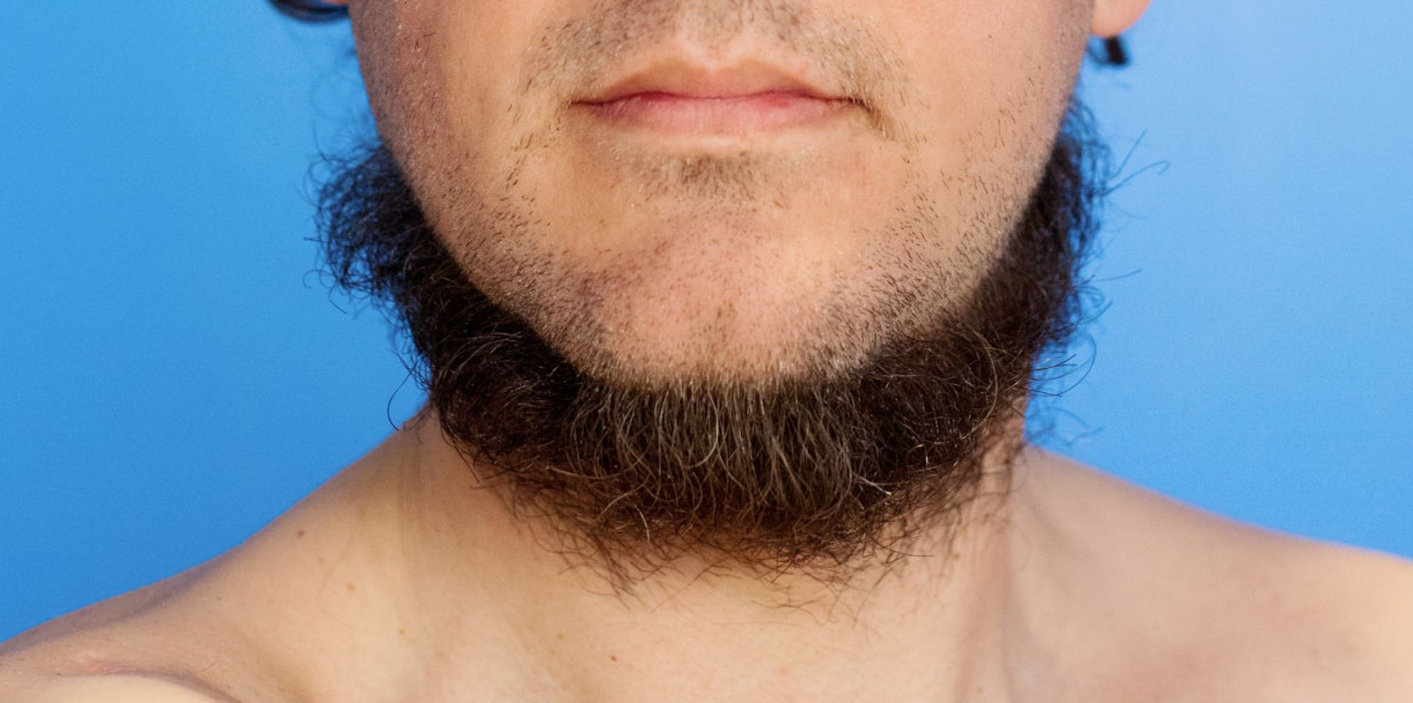 how to properly groom your neckbeard for the springtime. Black Bedroom Furniture Sets. Home Design Ideas