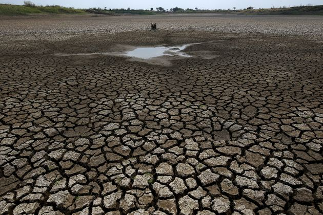 Water Scarcity Could Shrink Economies By Mid-Century: World