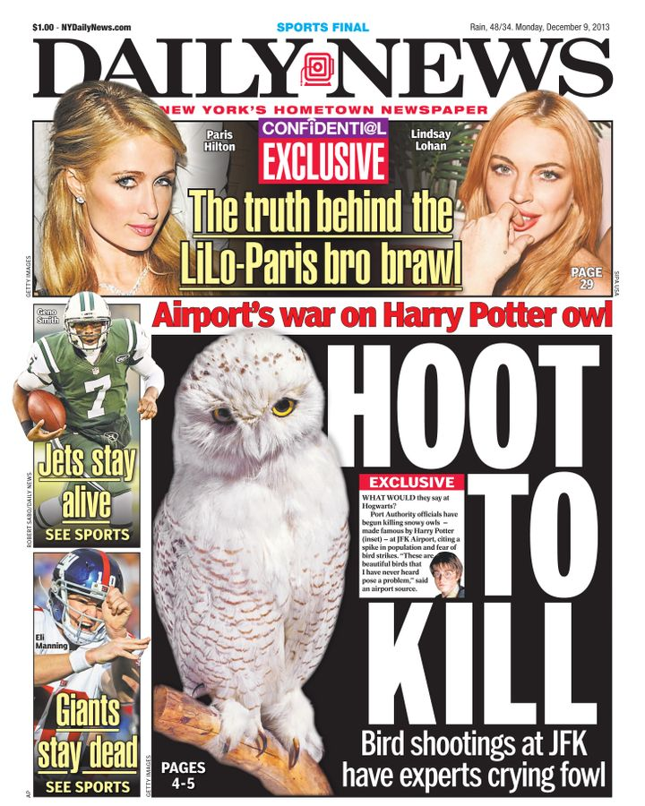 A 2013 New York Daily News cover addressing airport officials shooting snowy owls due to fear of bird strikes.