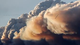A flock of birds fly as smoke billows from the Fort McMurray wildfires in Kinosis, Alberta, Canada, May 5, 2016. REUTERS/Mark Blinch