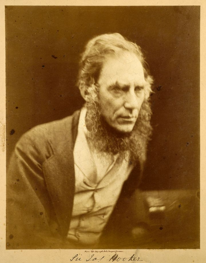 Joseph Dalton Hooker was a distinguished botanist and proud neckbeardsman.