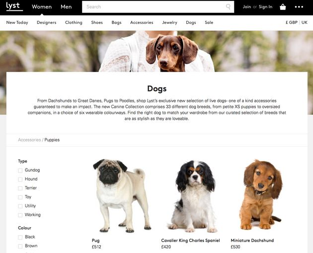 Lyst Under Fire For 'Selling' Puppies As 'Fashion