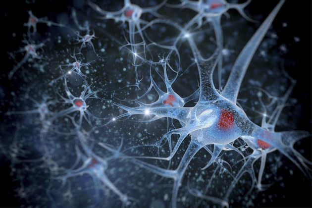 New Brain Scan Technique Can Spot Alzheimer's 15 Years Before Symptoms