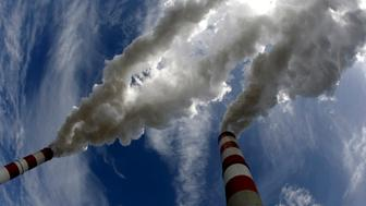 Smoke billows from the chimneys of Belchatow Power Station, Europe's biggest coal-fired power plant, in this May 7, 2009 file photo. The lignite-fired power plant in Belchatow, European Union's biggest polluter, will need to buy up to 20 million tonnes of CO2 emission permits by 2013, its chief Jacek Kaczorowski told Reuters on August 21, 2009. The plant released the equivalent of nearly 31 million tonnes of carbon dioxide into the atmosphere last year, topping by 4 million tonnes its EU-set ceiling as part of the bloc's attempts to curb global warming. To match Interview POLAND-BELCHATOW/    REUTERS/Peter Andrews/Files  (POLAND POLITICS ENVIRONMENT ENERGY BUSINESS)