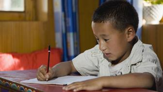 Boy (8-9) writing in home