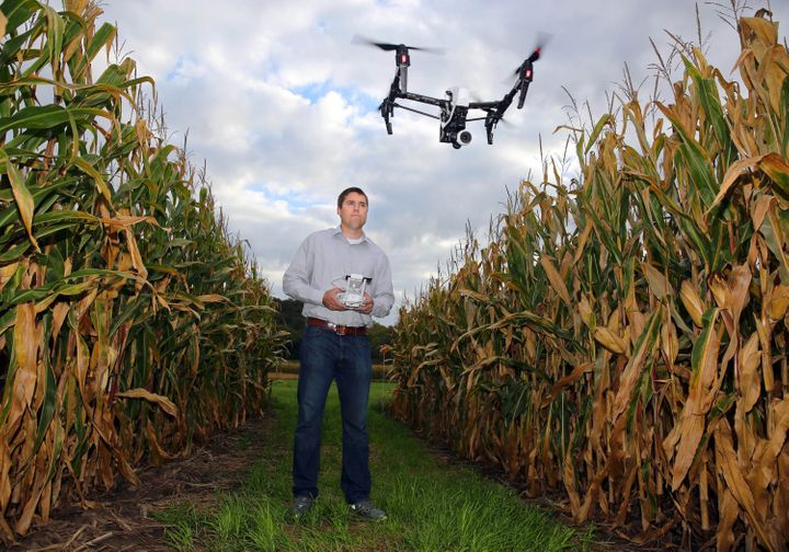 Drones can give farmers an overview of crops, so they can determine problem areas without having to walk through the fie