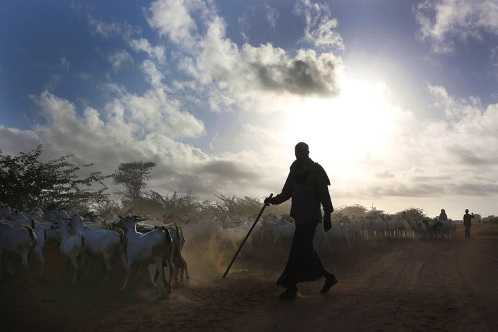 Kenya last Friday said it was closing Dadaab and ending all hosting of refugees in the country. The announcement sparked alar
