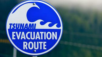 Sign depicting Tsunami evacuation route