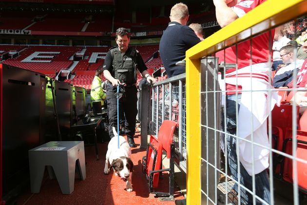 A sniffer dog at the ground after the