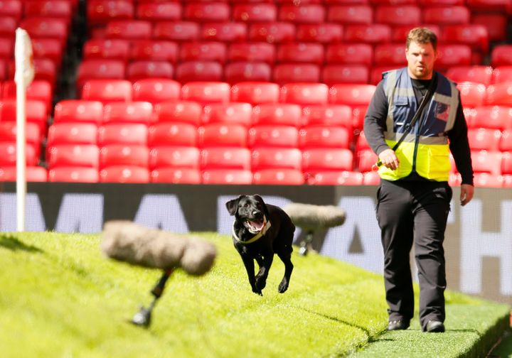 Police use sniffer dogs as fans are evacuated from the stadium as the match is abandoned.