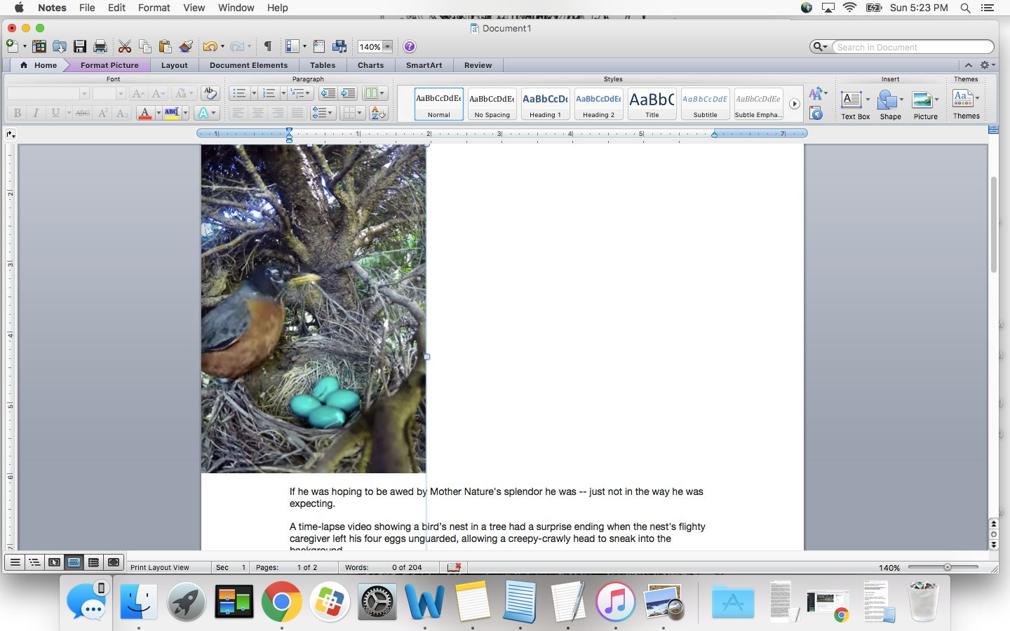 A time-lapse video captured a snake stealing eggs out of a nest.