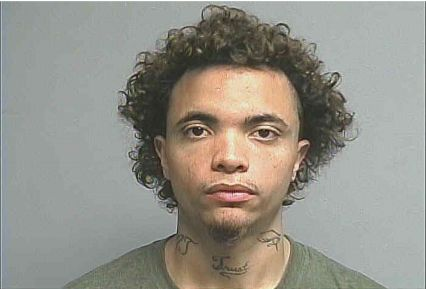Michael Andrew Sutton, 23, was sentenced Mondayto 180 days in jail for killing a 3-month-old puppy.