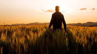 Guy contemplating the magical sunset light from a wheat field   in the Valles Oriental county with the valley, mountains and the horizon.