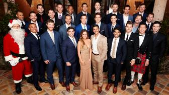 """THE BACHELORETTE - JoJo Fletcher first stole America's heart on Ben Higgins season of """"The Bachelor,"""" where she charmed both Ben and Bachelor Nation with her bubbly personality and sweet, girl-next-door wit and spunk. JoJo embarks on her own journey to find love when she stars in the 12th edition of """"The Bachelorette,"""" which premieres on MONDAY, MAY 23 on the ABC Television Network. (ABC/Craig Sjodin)(FRONT ROW) NICK B., CHRISTIAN, JAMES T., ALEX, JOJO FLETCHER, PETE, ALI, LUKE, JOHN, DANIEL;(MIDDLE ROW) GRANT, COLEY, SAL, ROBBY, JAMES S., JORDAN, WELLS, EVAN, CHASE;(BACK ROW) JAMES F., VINCENT, JAKE, DEREK, BRANDON, CHAD, NICK S., WILL"""