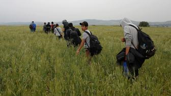 A group of migrants and refugees who stayed in Idomeni makeshift camp walks through a field in attempt to cross the Greek-Macedonian border near the village of Evzoni, Greece, May 12, 2016. REUTERS/Marko Djurica