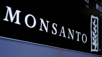 Monsanto is displayed on a screen where the stock is traded on the floor of the New York Stock Exchange in New York City, U.S., May 9, 2016.  REUTERS/Brendan McDermid/File Photo