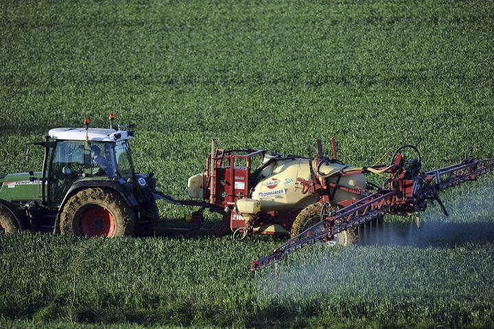 A farmer sprays a chemical fertilizer containing nitrogen on his wheat field in southern France.