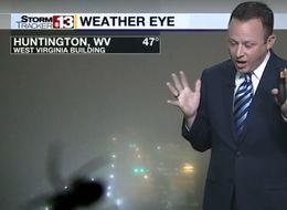 Weatherman Freaks Out As Massive Spider Invades His Forecast
