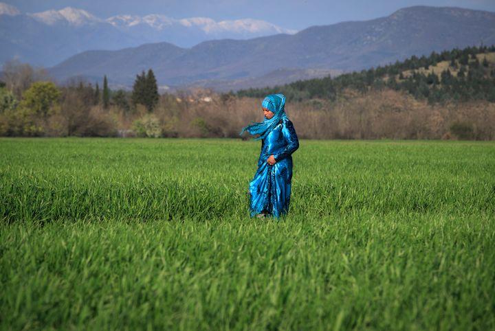 A refugee walks in a field along the Greek-Macedonian border.