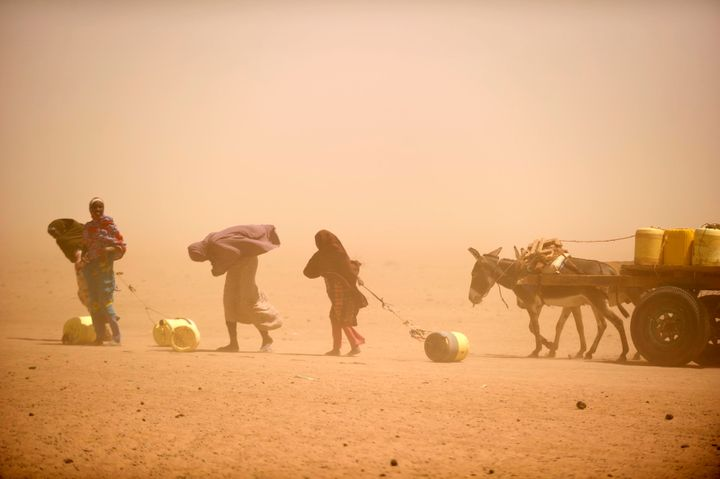 Women and girls, caught in a small sandstorm, fetch water in Wajir. A wide swathe of east Africa has been hit by years o