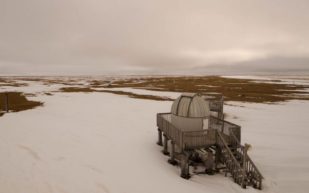 Spring Has Sprung In The Arctic ... But It's Way Too Early For