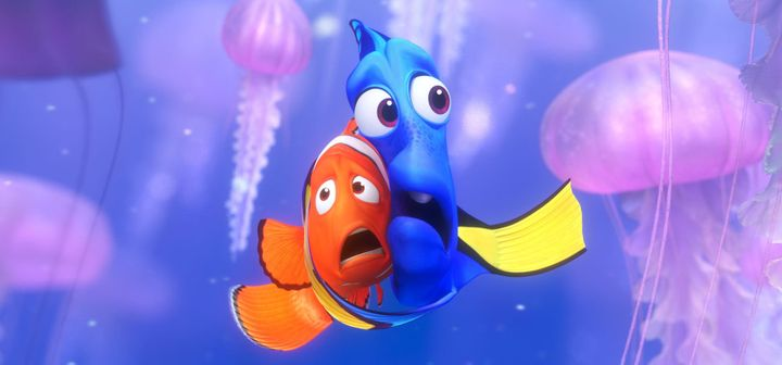 finding nemo hurt clownfish will the same happen with dory huffpost