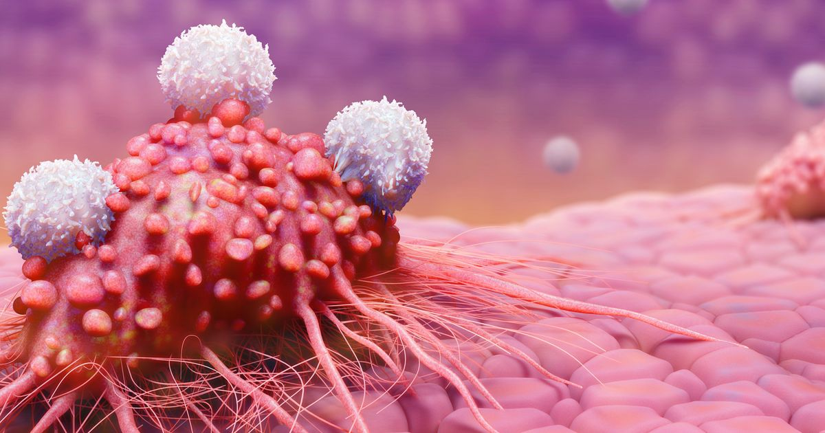 A Hidden Switch In Our Immune System Could Help Fight Cancer