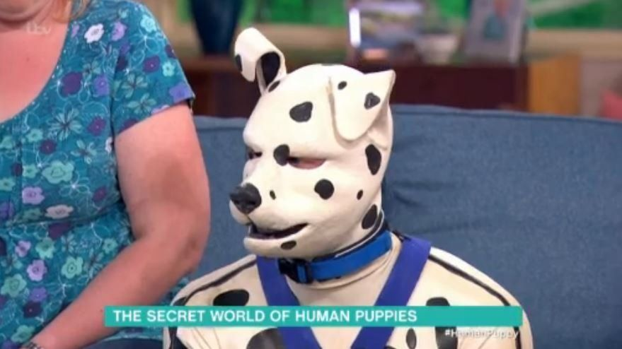 'This Morning': Human Puppy Interview Leaves Viewers In