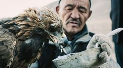 Watch Mongolian Hunters Use Eagles To Catch