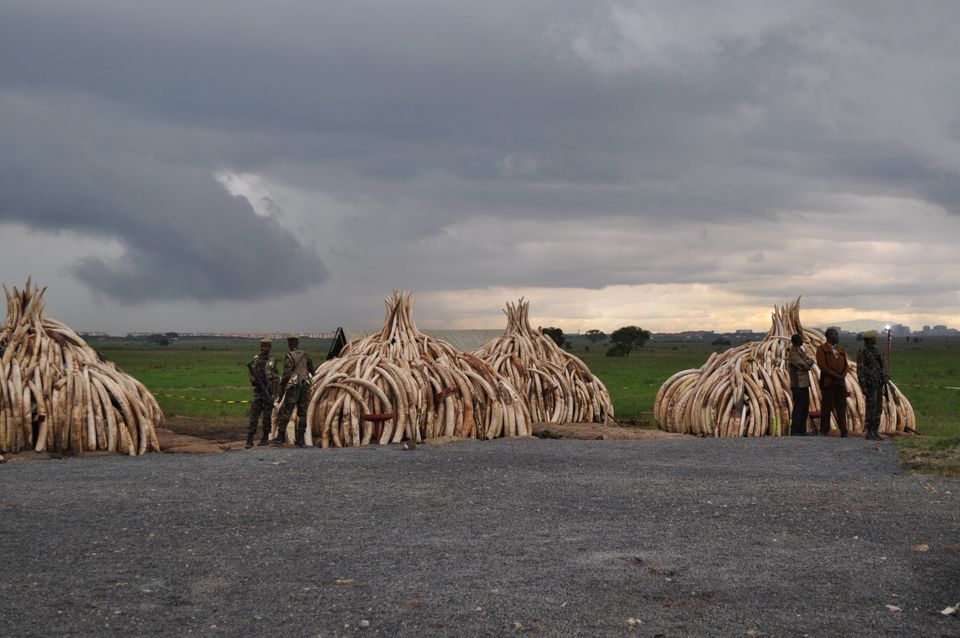 Nairobi National Park, the site of last month's celebrated ivory burn, is threatened by a Chinese-funded