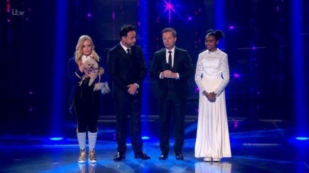 The judges had to chose between Trip Hazard and Jasmine