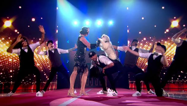 Ashleigh and Pudsey perform with Diversity.
