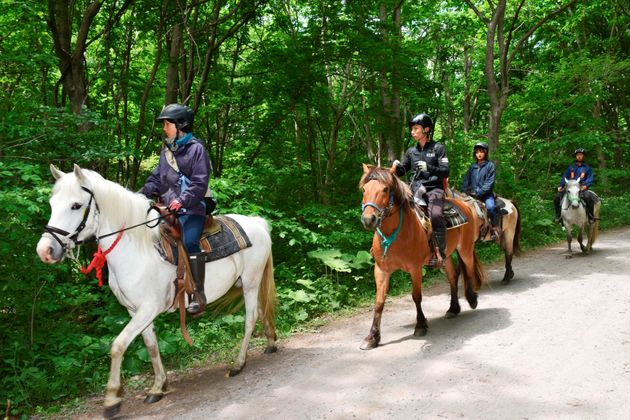 Rescuers on horseback search for a 7-year-old Japanese boy who went missing after being left in...
