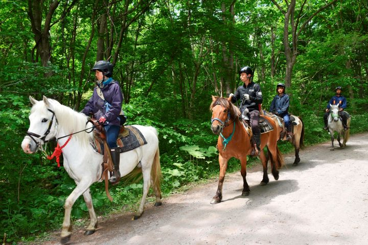 Rescuers on horseback search for a 7-year-old Japanese boy who went missing after being left in a forest overnight by hi