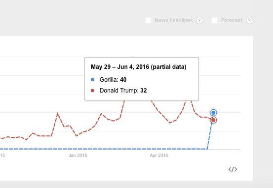 The relative searches for Gorilla and Donald Trump.