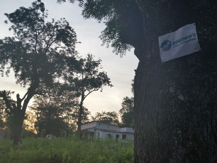A tree marks the entrance to RadioVoice of Ouaka. The station broadcasts for two hours a day, mainly message of peace a