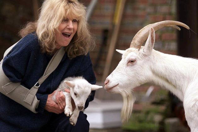 Carla Lane devoted her time away from work tothe welfare and rights of