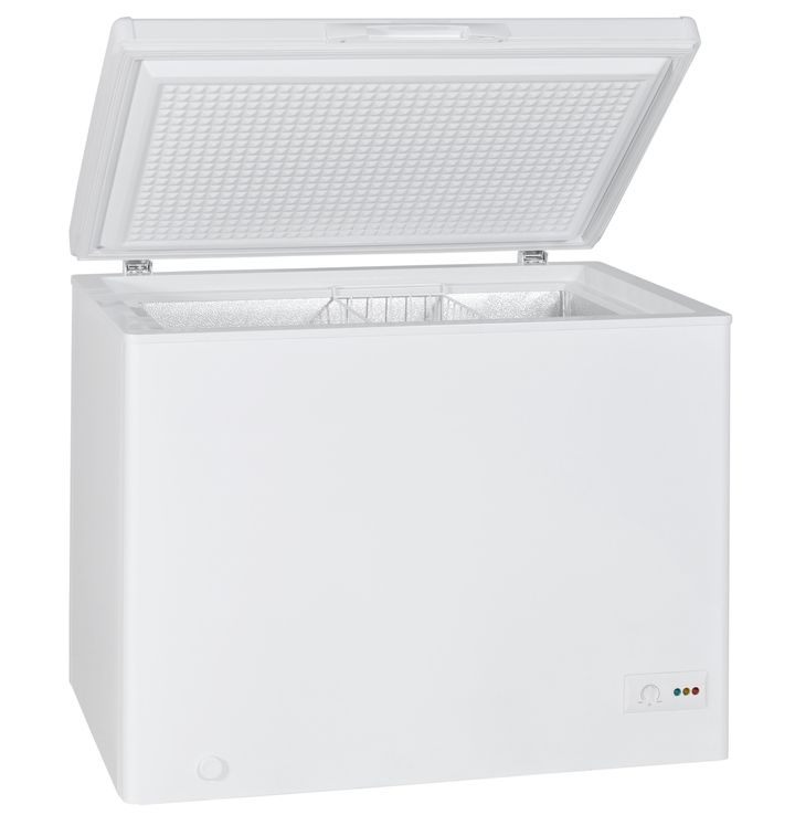 """The last owner allegedly said that the freezer, a similar one pictured here, was being used as a """"time capsule"""" by a Sunday s"""