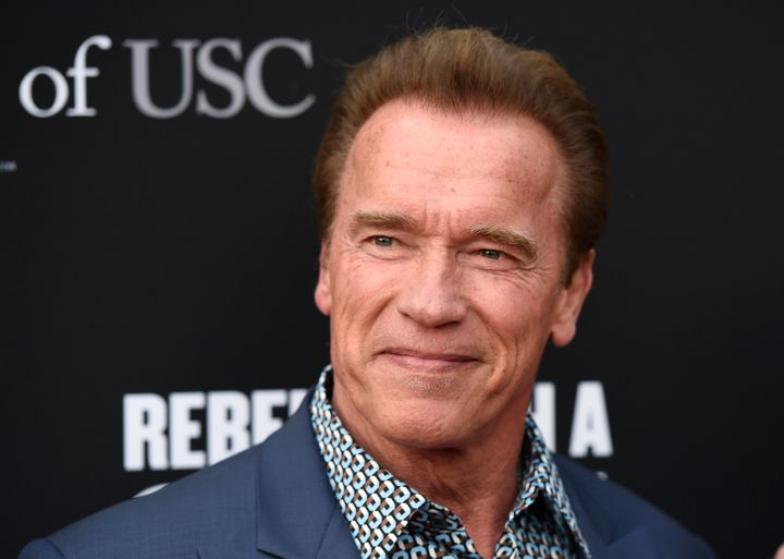 """The Terminator"" star used the amazing close encounter to speak out against them being hunted for their ivory tusks."