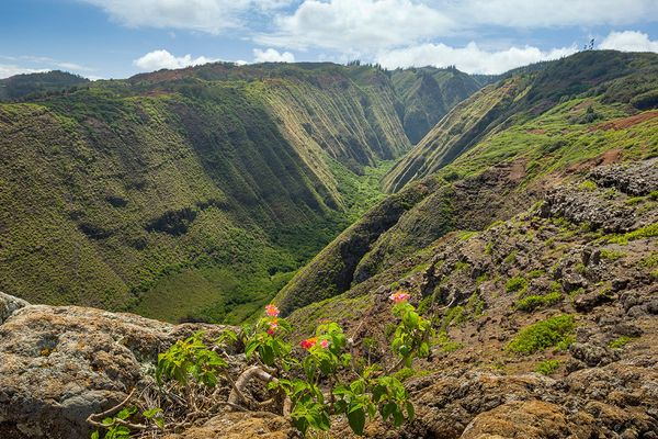 "As one local put it, ""You can go hiking for four hours and not see a single person."" Lanai's trails are the definition of pea"
