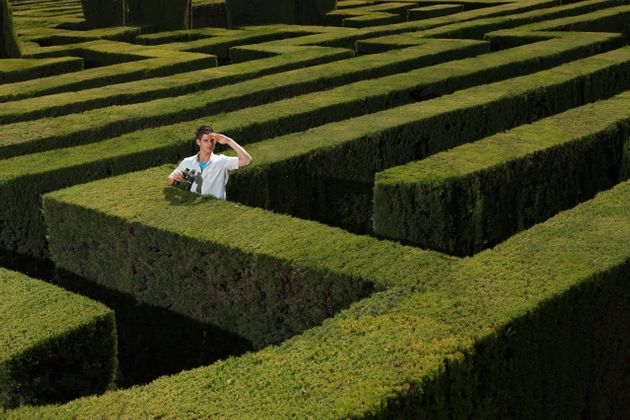How to escape the maze? Maybe INTUITION
