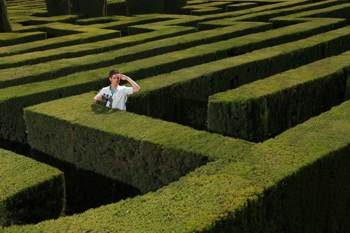 How to escape the maze? Maybe INTUITION can help!