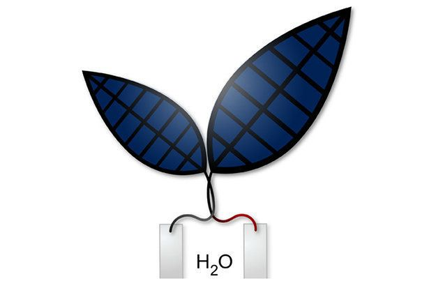 Scientists Develop 'Bionic Leaf' That Turns Sunlight Into Liquid Fuel 57519282130000fb0738381b