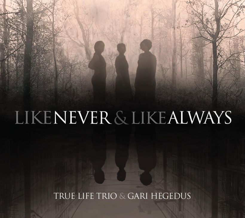 True Life Trio / <i>Like Never & Like Always</i>
