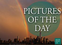 Pictures Of The Day