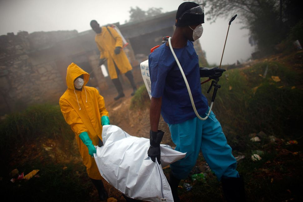 Health workers collect the body of a cholera victim in Petionville, Haiti, in February 2011. The disease first appeared on th