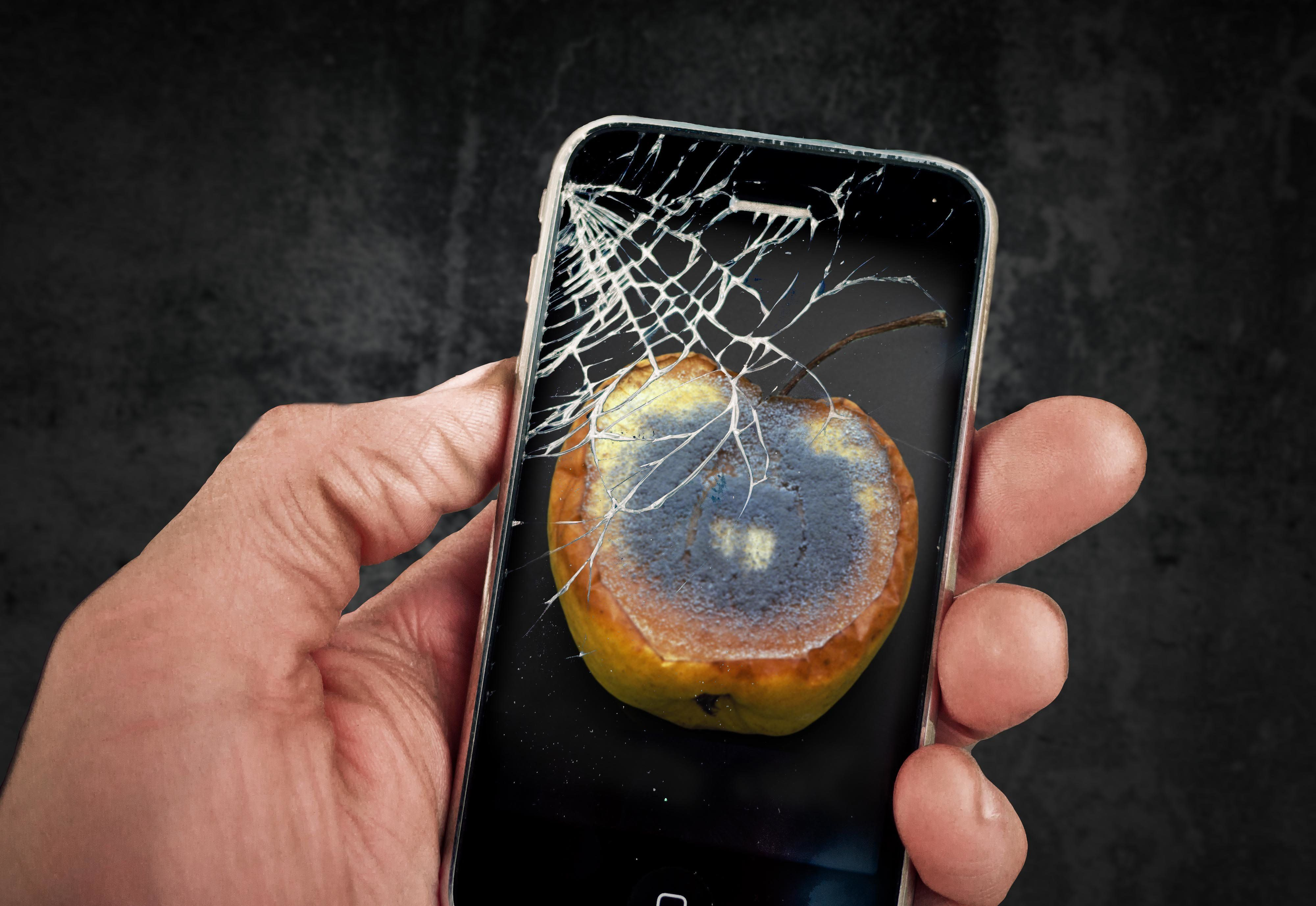 Shattered glass of a beloved smartphone.
